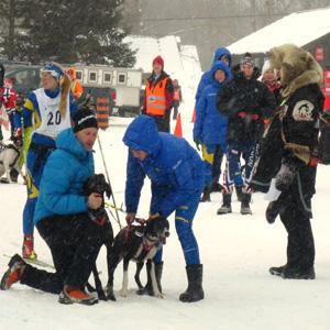 IFSS Winter Sledding World Championship in the Haliburton Forest Jan 2017