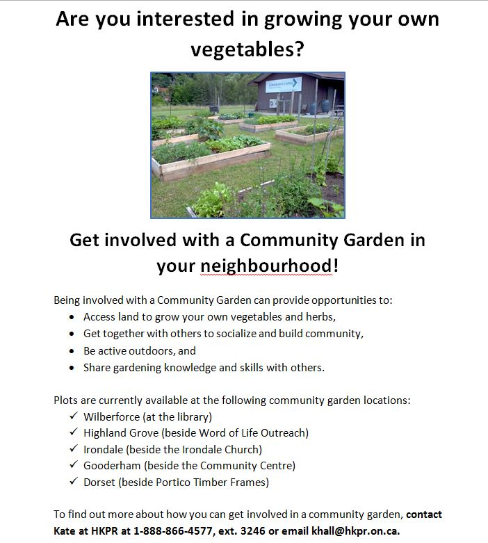 Interested in growing your own vegetables @ See poster