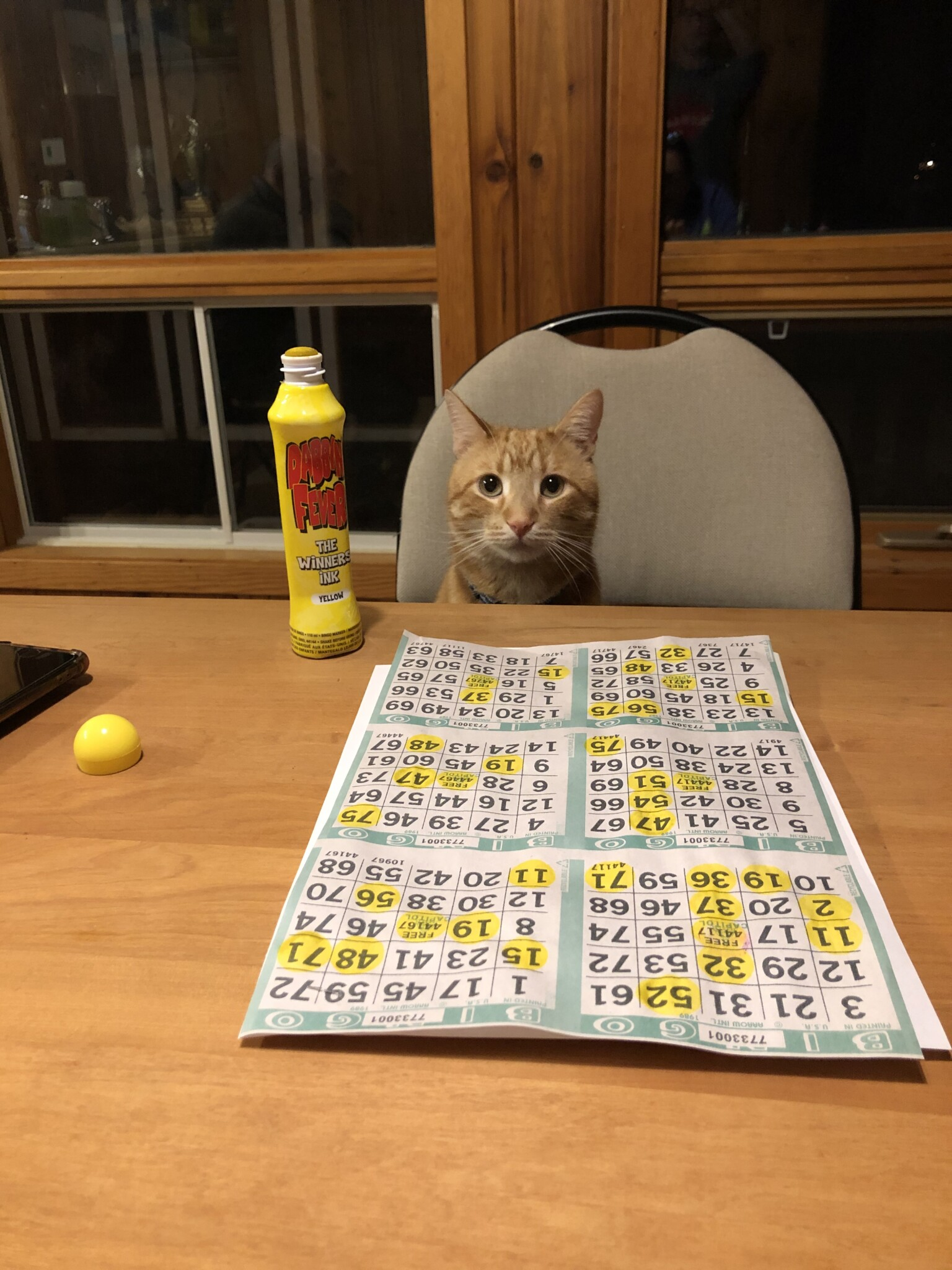 Marv is a very serious bingo player.