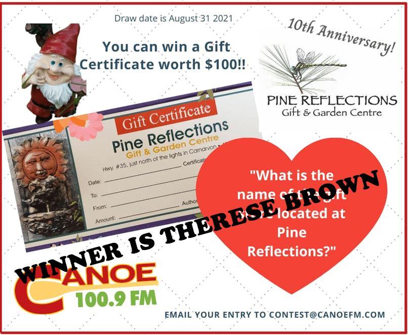 Pine Reflection Winner For August